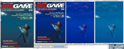 biggame019web.jpg